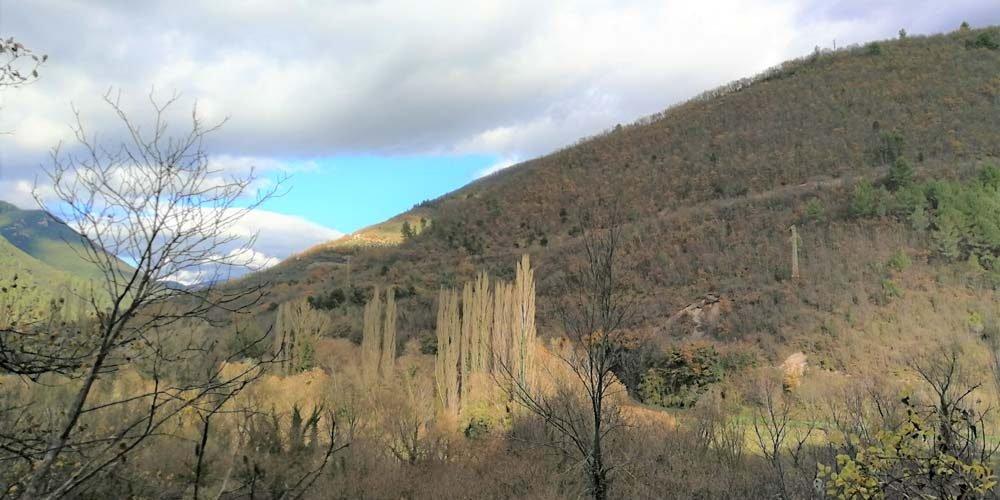 Foresta Umbria crowdfunding
