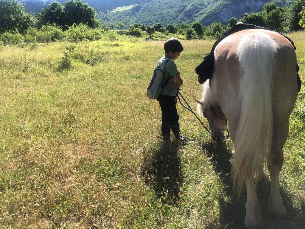 pony rangers experience bambino con cavallo