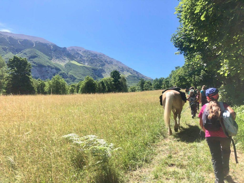 trekking con i cavalli