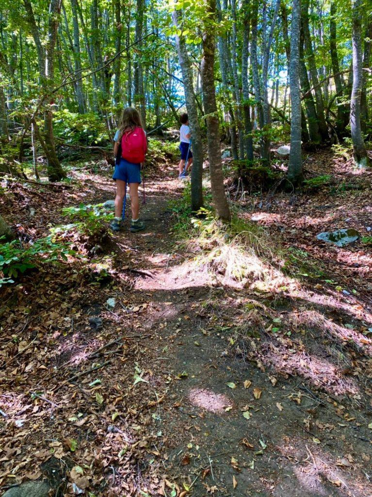 tre caciare ascoli escursione nel bosco